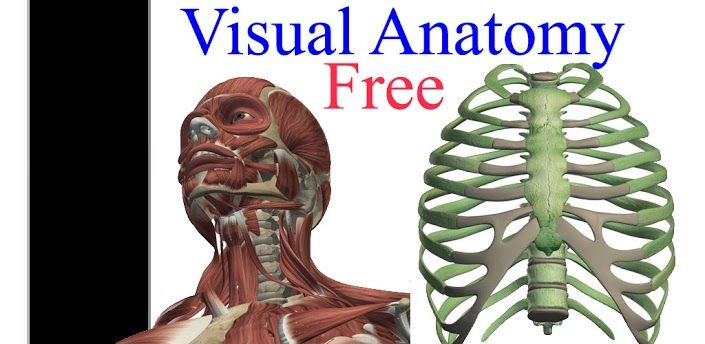 Visual Anatomy Free Apps Pinterest App Android And Anatomy