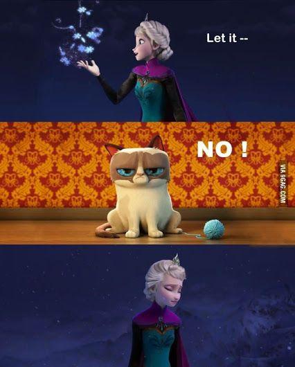 Best 25 Grumpy Cat Frozen Ideas On Pinterest Grumpy Cat
