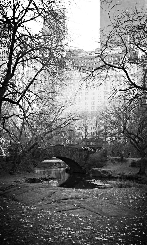 New York print, New York decor, New York photo, Central Park print, Central Park photo, Black & White print, Wall Art, Home Decor,bridge art - pinned by pin4etsy.com