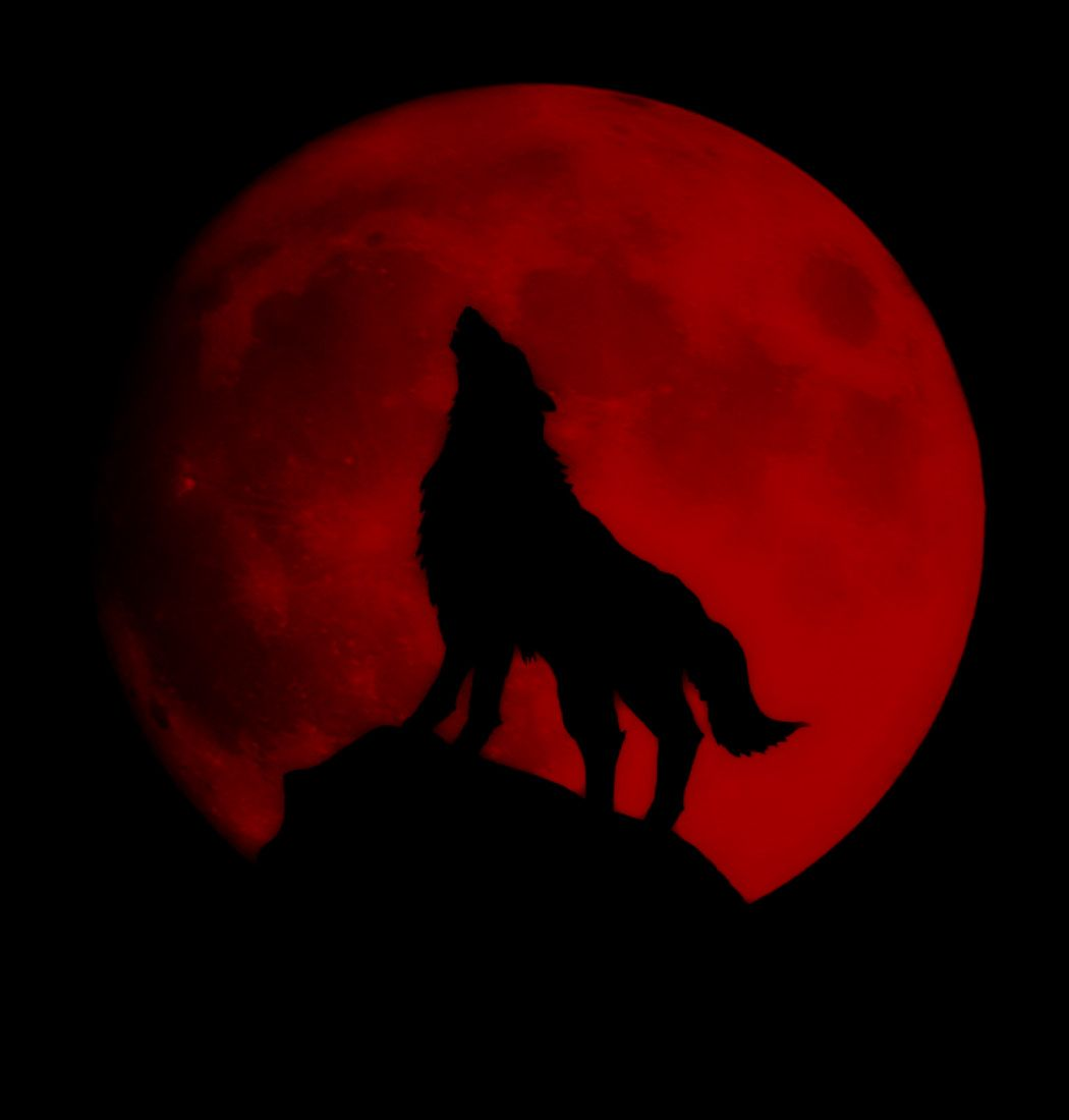 Lachesis Red And Black Wallpaper Dark Red Wallpaper Wolf And Moon Tattoo