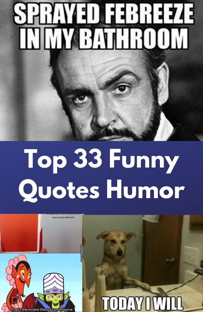 Top 33 Funny Quotes Humor Quotes Words Sayings Funny Inspirational Quotes Movie Quotes Funny Funny Quotes