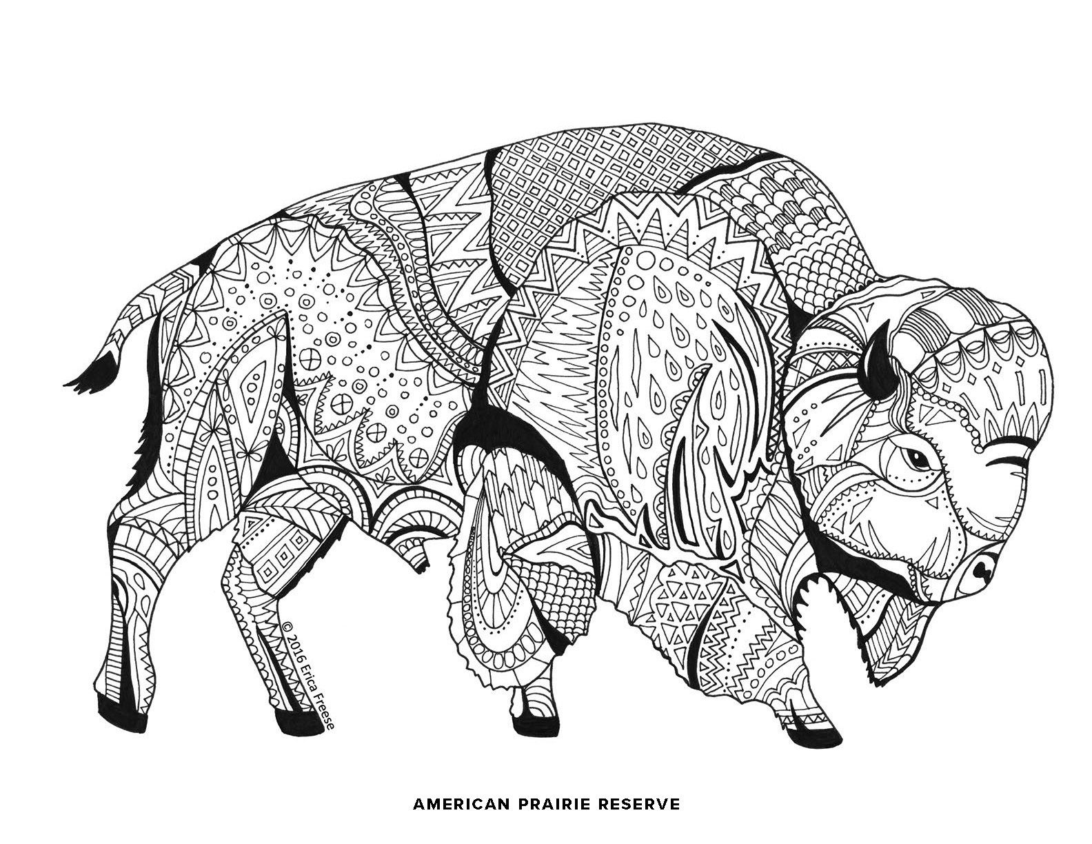 Prairie Dog Coloring Page - Get Coloring Pages | 1224x1584
