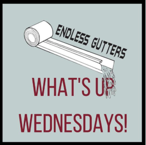 What S Up Wednesdays On Sunday September 1st The 16th Annual Brevard Caribbean Festival Is Going On In Wickham Park In How To Install Gutters Seamless Gutters