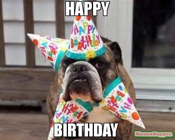 Dog Birthday Meme Happy Birthday Meme Birthday Dog 58472 Memeshappen Happy Birthday Animals Funny Happy Birthday Dog Happy Birthday Animals
