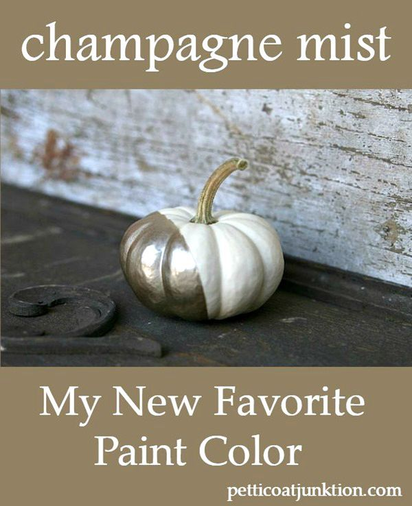 Champagne Paint Color And White Pumpkins Bloggers Best Diy Ideas Colors Painting Spray