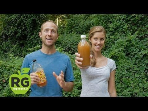 Wild Fermentation with Rob Greenfield and Cheryl Davies - YouTube