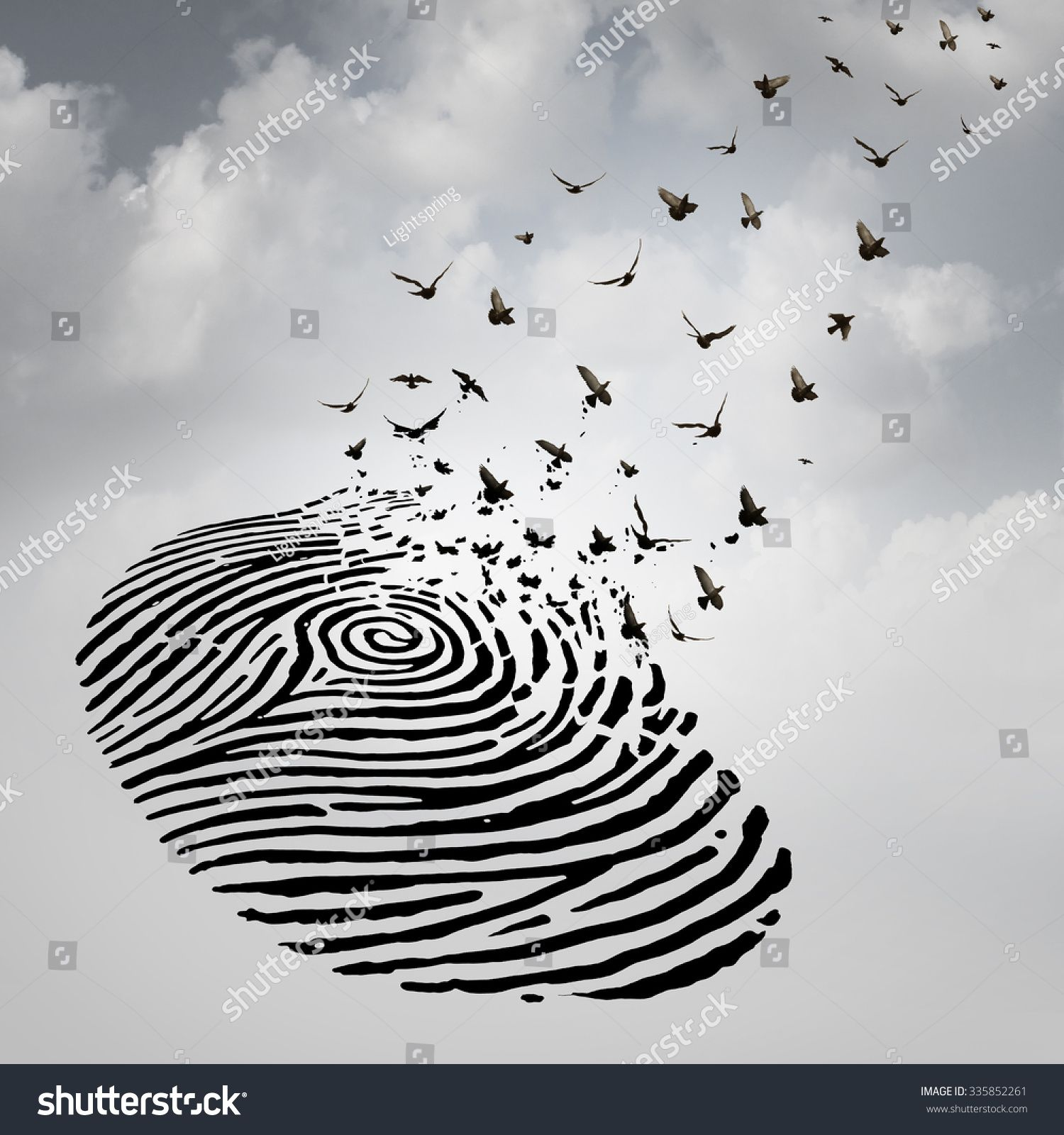 Identity freedom concept as a fingerprint transforming into flying transforming into flying birds as a metaphor for a person losing a psychological identity or a symbol of death and renewal after a loss of a loved one biocorpaavc Image collections