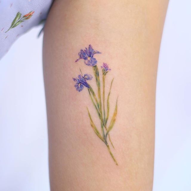 Pin By Lila Jane On Tattoo Iris Tattoo Iris Flower Tattoo Small Tattoos