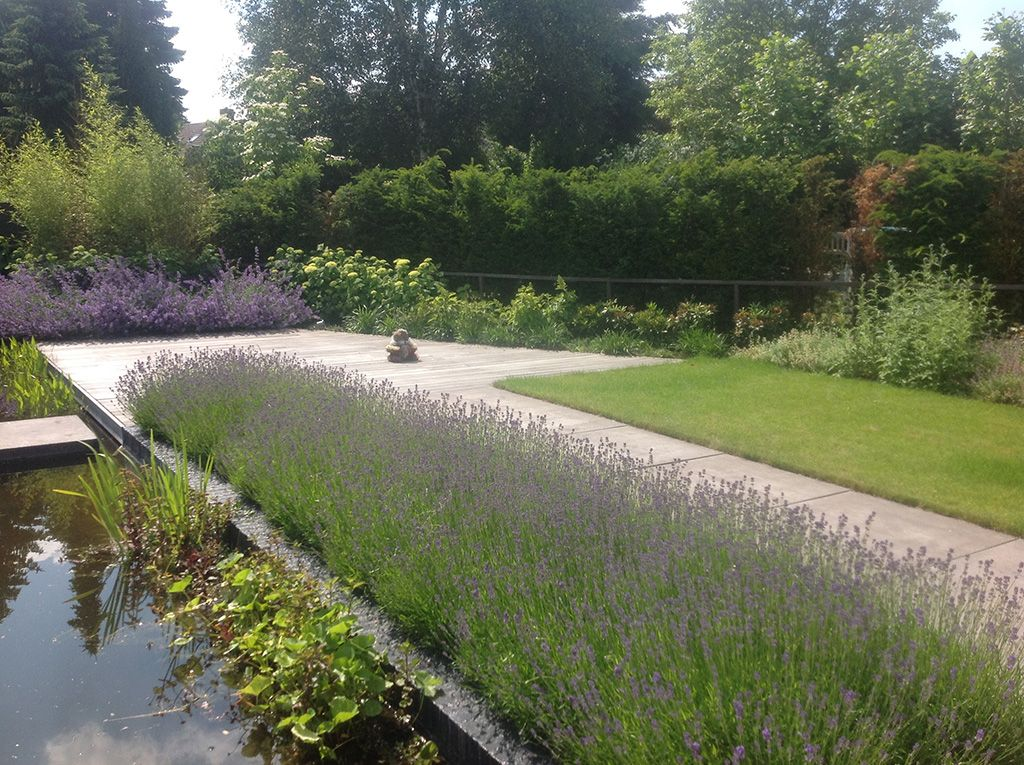 Moderne tuin met vijver google zoeken vijvers en for Moderne waterpartijen tuin