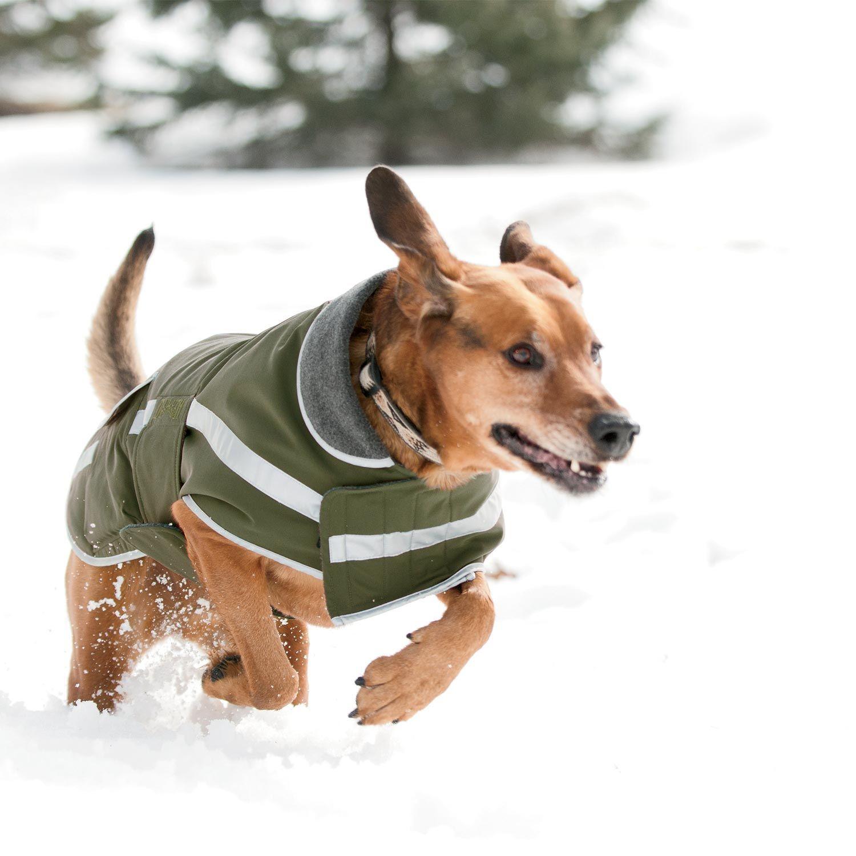 Grab Dog Jacket Dog Gear For Scout Friends Dog Jacket