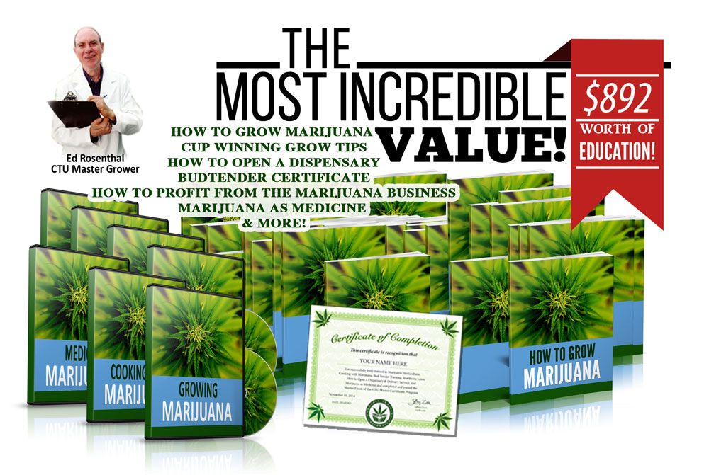 What You Get For Enrolling In Cannabis College | Pinterest ...