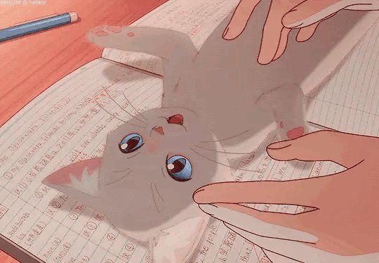 Taro ♡ on Twitter