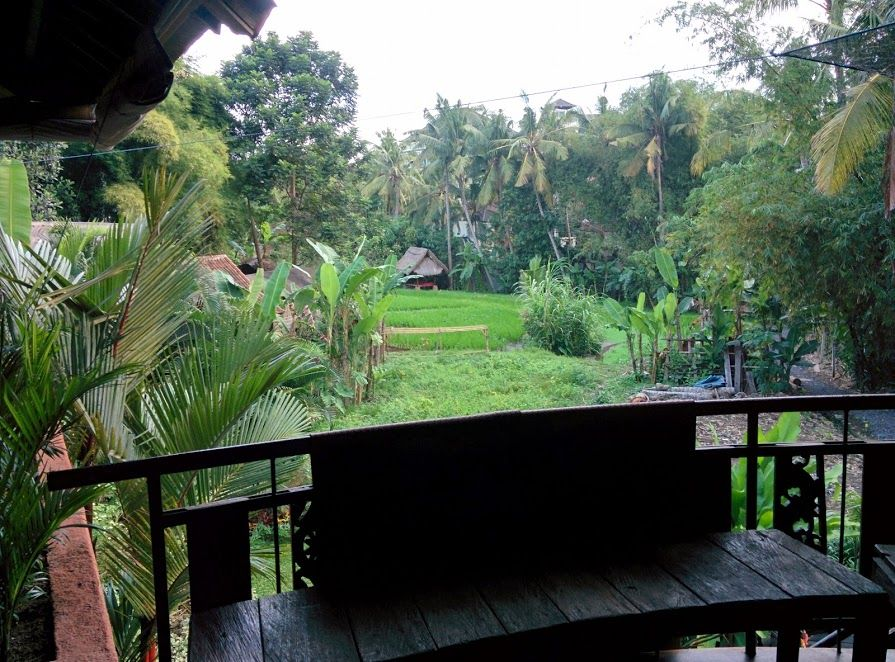 Vistas des del estudio del Yoga Barn en Ubud