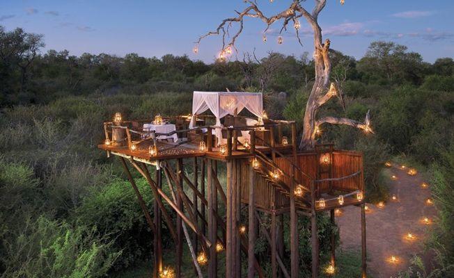 5 dream tree house honeymoons tree houses tree house resort and 5 dream tree house honeymoons sisterspd