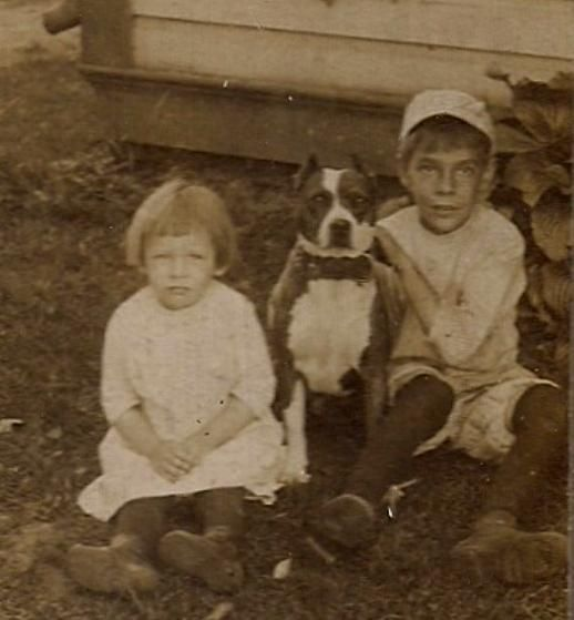 Handsome Pit Bull Terrier Poses with Children Outside~Antique Mounted Dog Photo