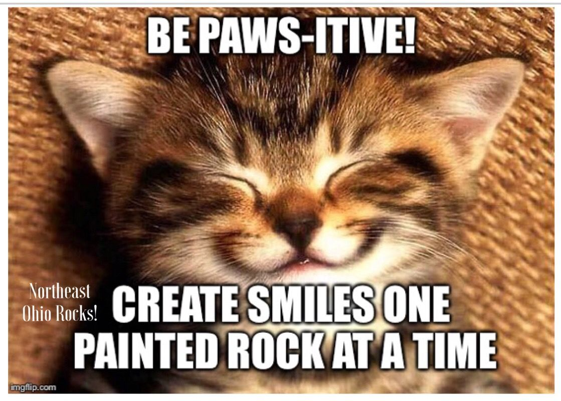 Meme Monday! Painted Rocks at Northeast Ohio Rocks! Cats
