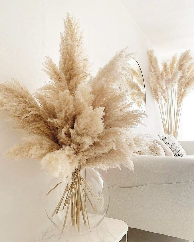 Pampas Grass Decor Ideas Perfect for Any Interior Style