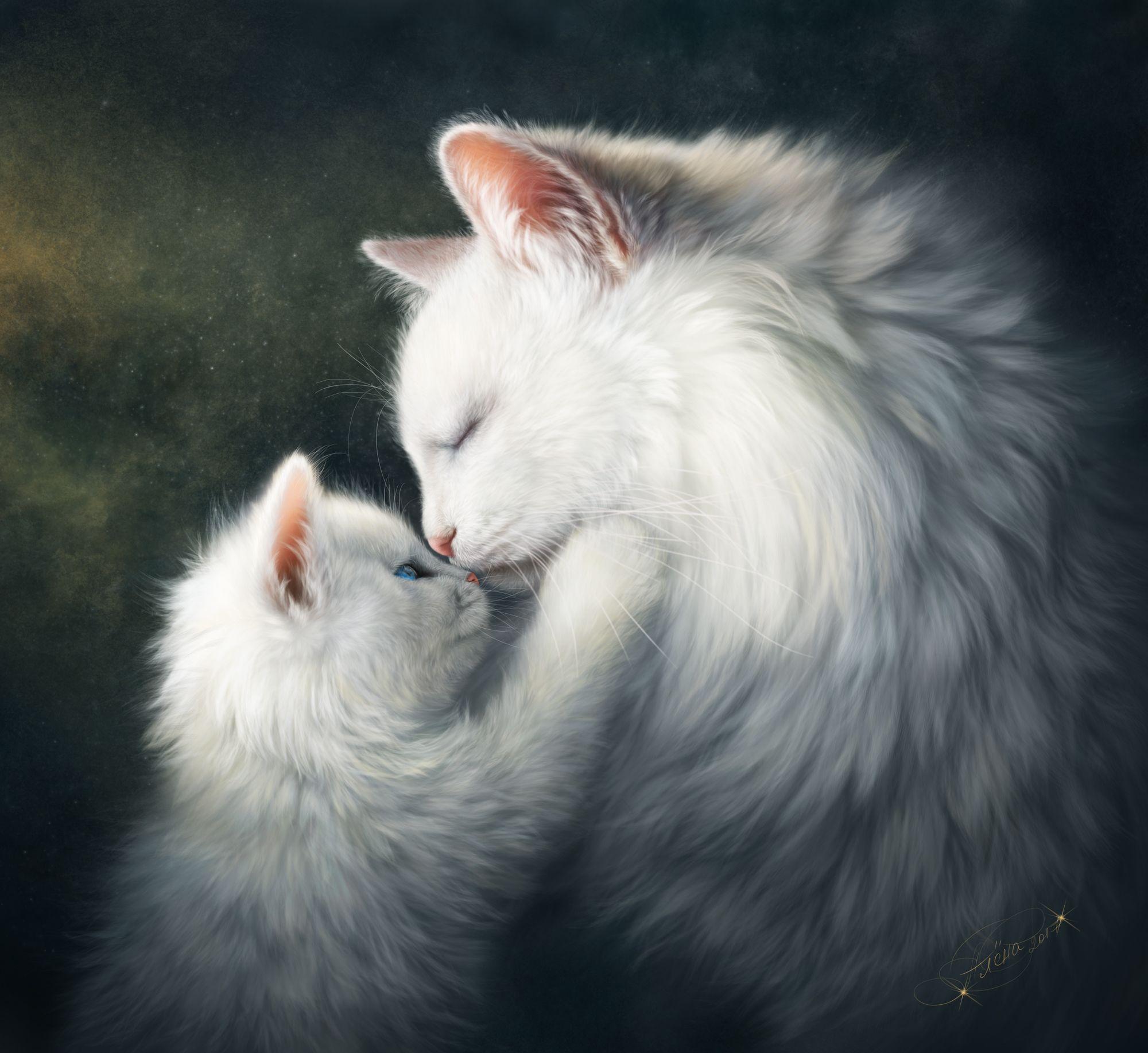 Tenderness By Alenaekaterinburg Pinturas De Gato Gatitos Lindos Gatos Graciosos