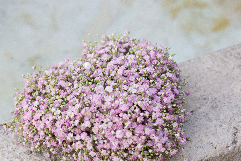 Deko Flora Line schleierkrautherz in rosa für hochzeit ringkissen gypsophila