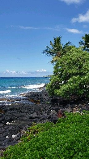 7 Awesome things to do in Big Island Hawaii including Kailua Kona and Hilo. WATCH the full video!