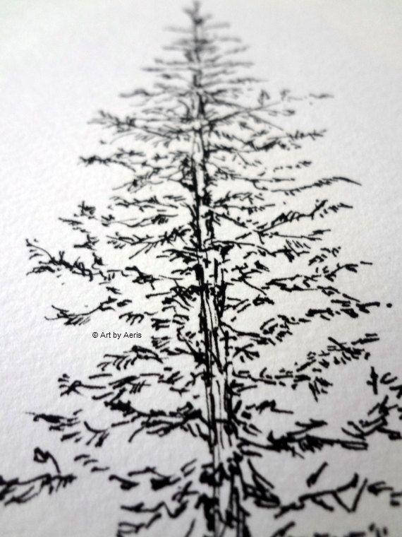Evergreen Pine Tree Art Spruce Tree Forest Woodland Nature