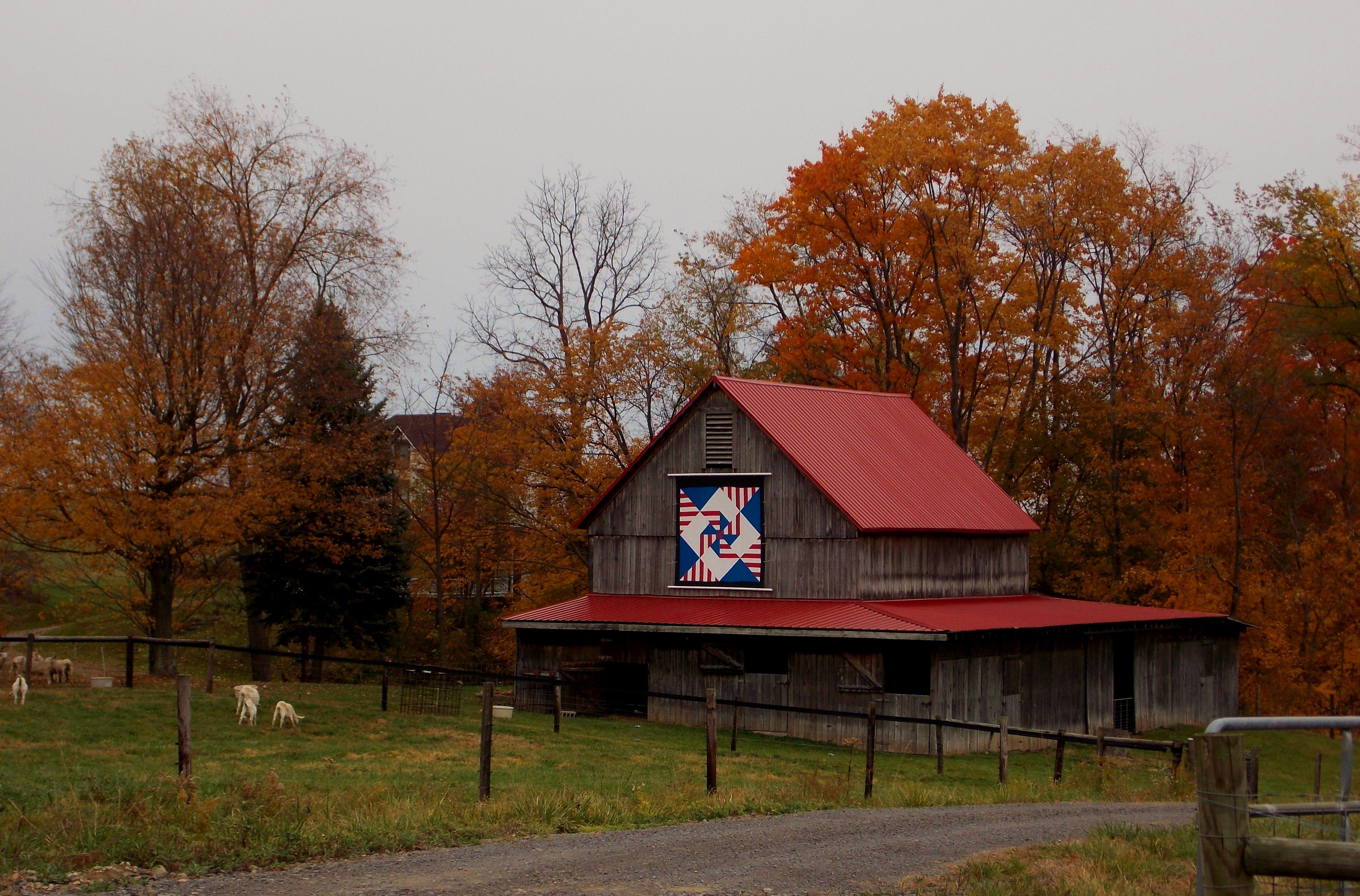 Quilt Barn On Sheep Farm In Greene County Pennsylvania