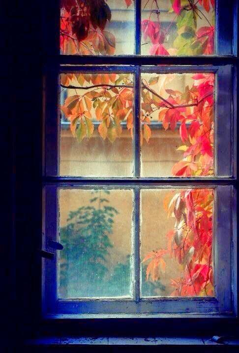 In autunno, il rumore di una foglia che cade è assordante perchè con lei precipita un anno. ~ Tonino Guerra (Antonio Guerra)