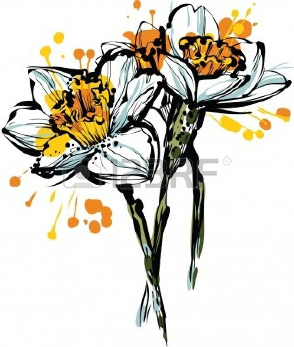 December Birth Flower Tattoo Black And White: Beautiful Color Picture Three Flowers Of Narcissus Royalty