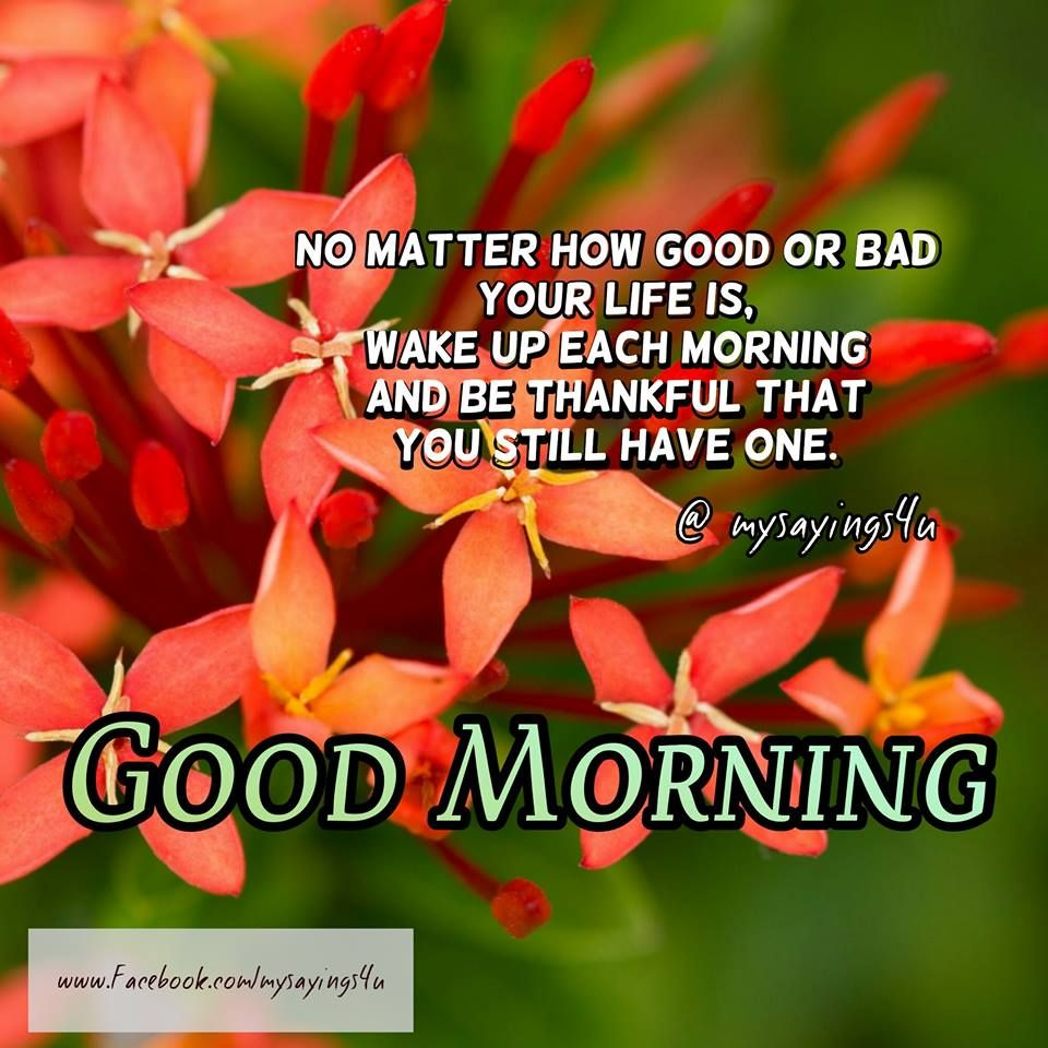 Witty ways to say good morning