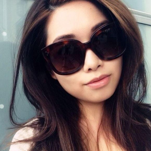 78cac79ec9e Celine Accessories - New Celine New Audrey Tortoise Havana Sunglasses