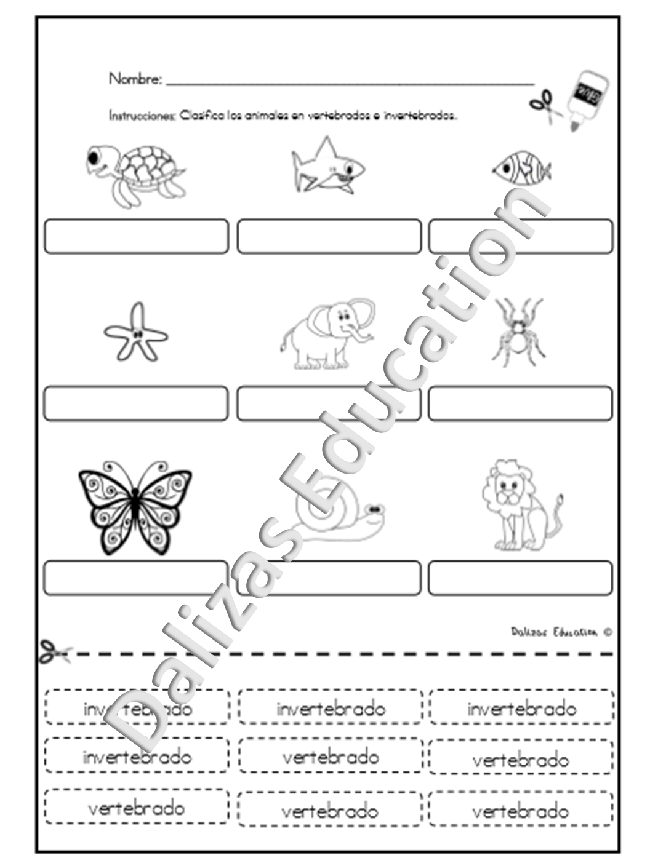 Animales vertebrados e invertebrados | Vertebrate and invertebrate ...