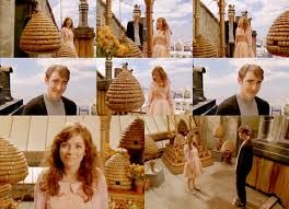 Bee Hives from Pushing Daisies