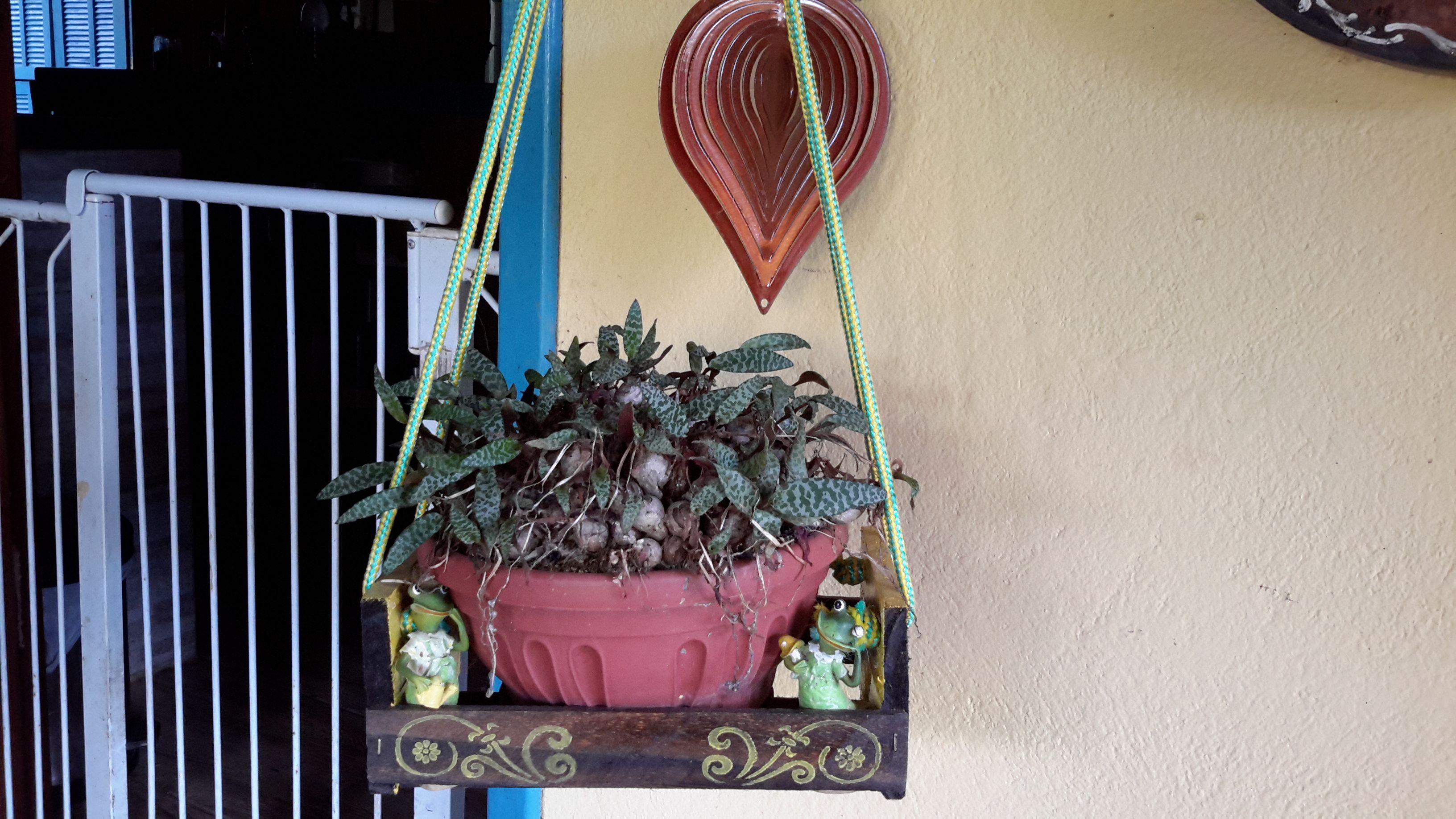Cachepô feito de caixotinho de feira de frutas