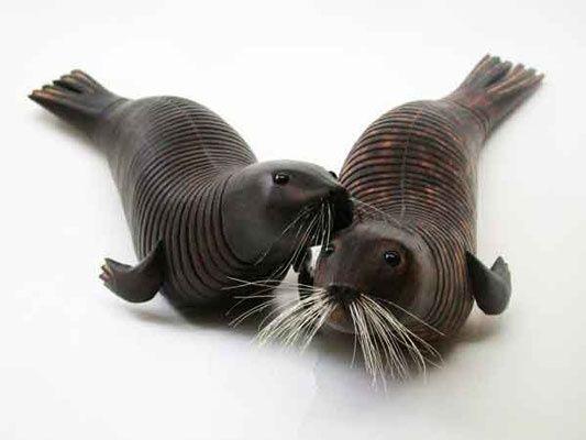 Par De Focas Animal Art Artwork Animal Illustration