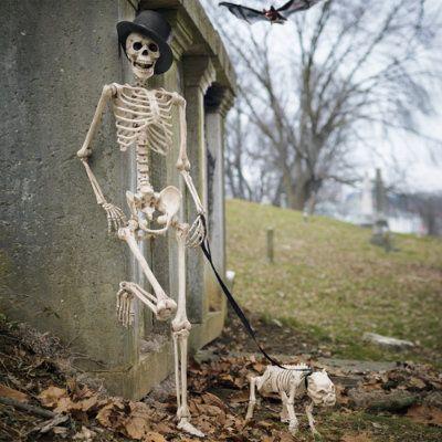 Skeleton Dog on Leash $29 Halloween Pinterest Halloween