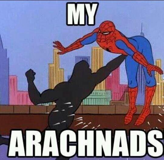 Pin By Jake Norris On Spider Man Memes Spiderman Meme Memes Meme Pictures