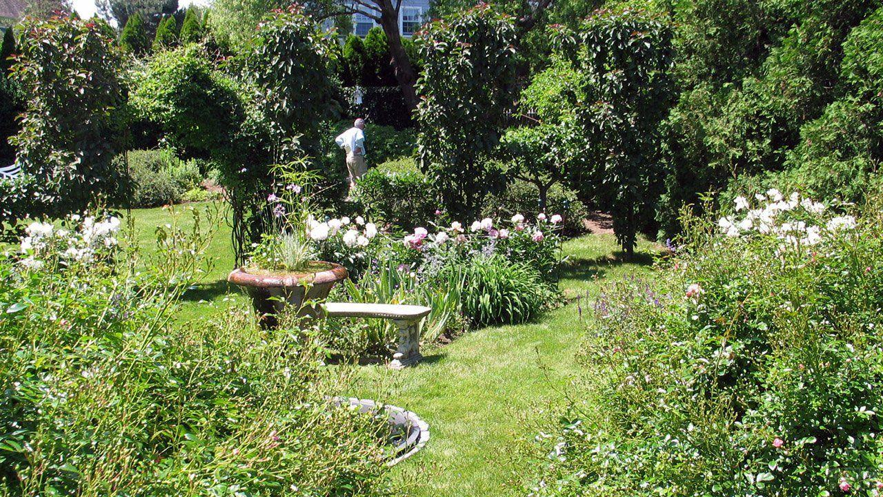 Оформление сада (47 фото) в 2020 г | Дизайн сада, Сад ...