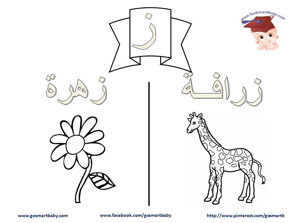 تلوين الحروف العربية حرف الزاي أو حرف الزين ز Learn Arabic Alphabet Lettering Alphabet Arabic Alphabet