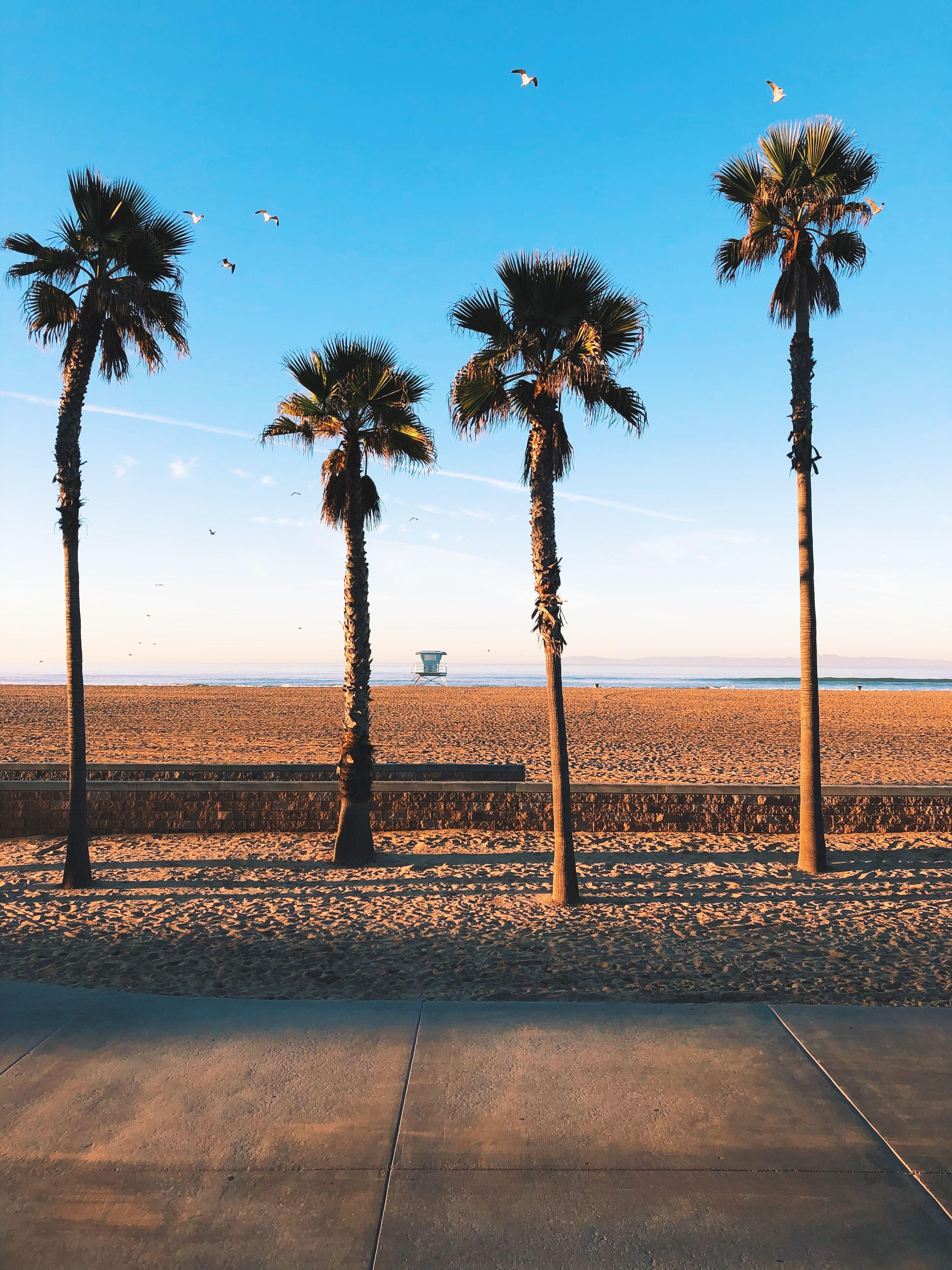 Huntington Beach, CA in 2020 | Huntington beach hotels, Huntington