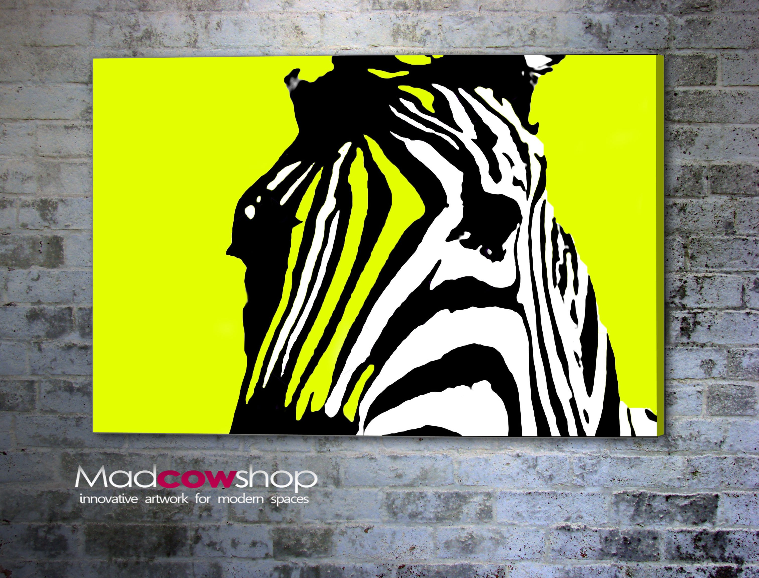 Funky zebra wall art home decor pinterest walls and for Funky wall art