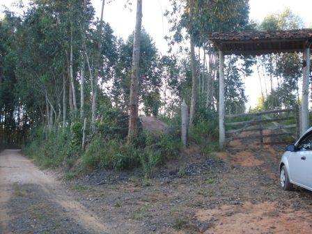 Chácara à Venda, 11000 m² por R 130.000 Amaro Ribeiro
