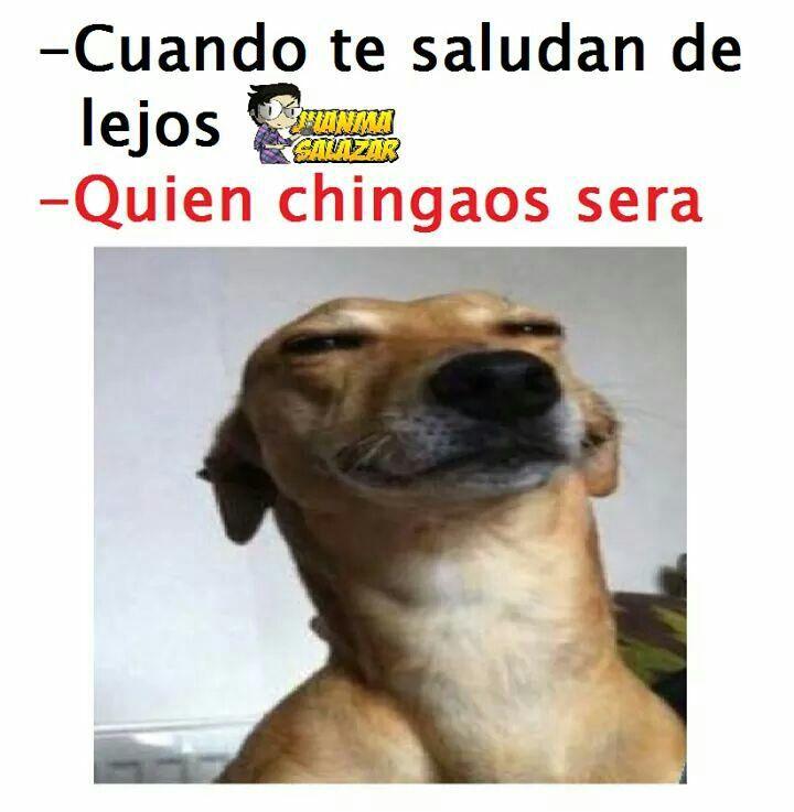 Memes Funny Spanish Memes Book Memes Memes