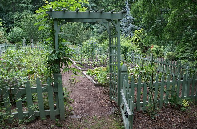 Vegetable garden with green picket fence 2 Fenced