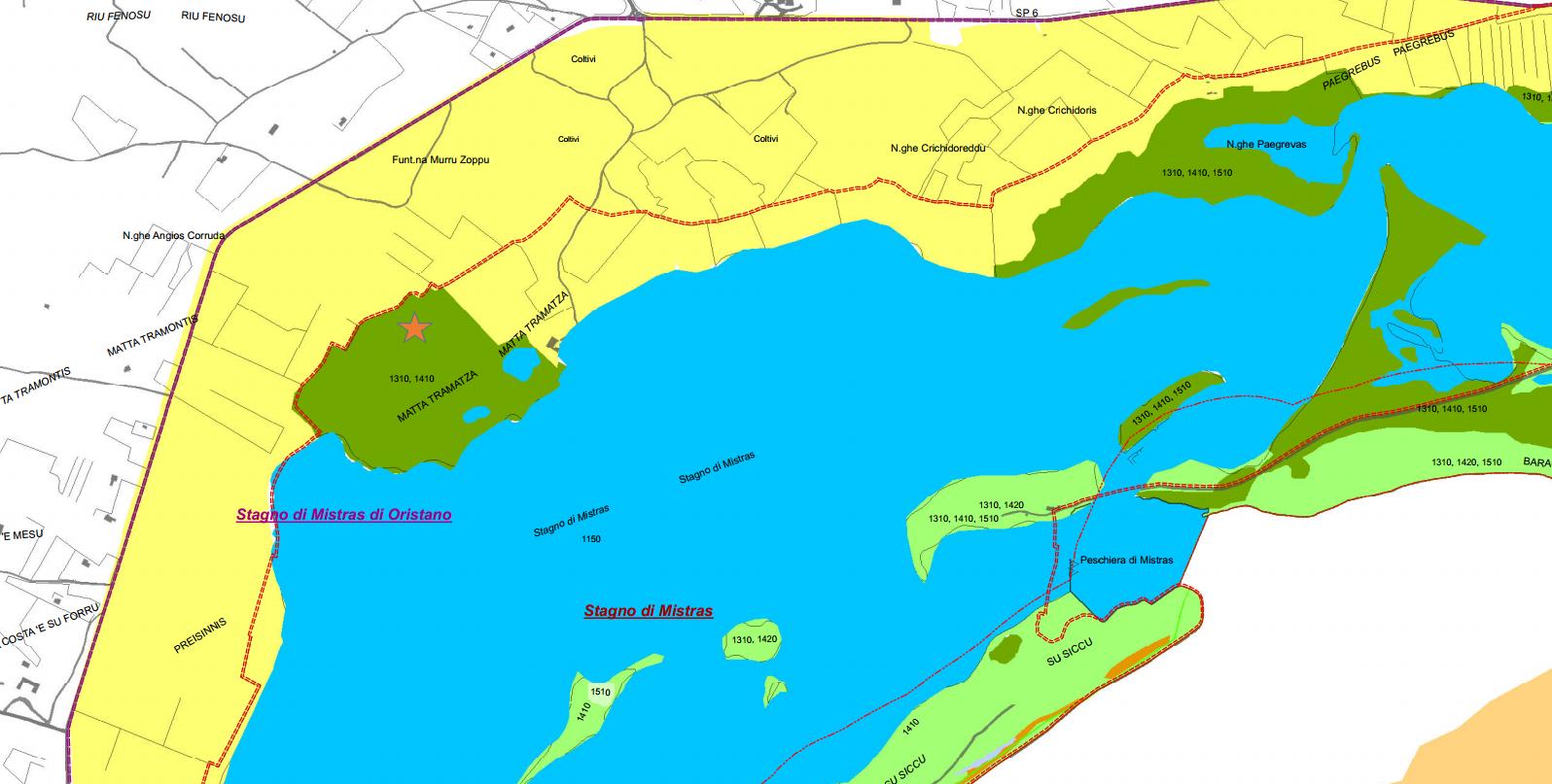 """Fig. 2, la laguna di Mistras. Immagine da questo documento. E' stata aggiunta la posizione approssimativa del pozzo (stellina arancione). Il giallo indica coltivi, il verde scuro a Matta Tramatza  indica""""Vegetazione pioniera a Salicornia e altre specie annuali/Pascoli inondati mediterranei (Juncetalia marittimi)""""."""