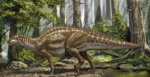 Jintasaurus was a herbivore that lived in the Cretaceous period and inhabited Asia (China)