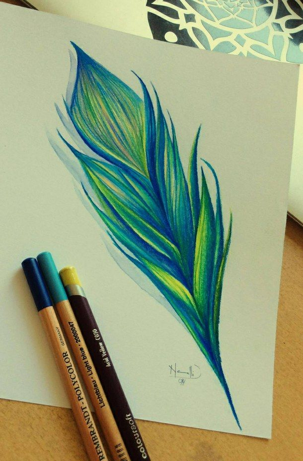 Color pencil sketch color drawing feather colors