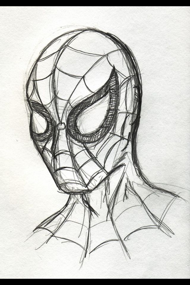 Rough Spider Man Sketch