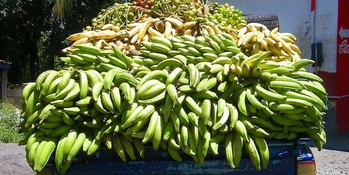 Market, Castries, Saint Lucia, Barbados