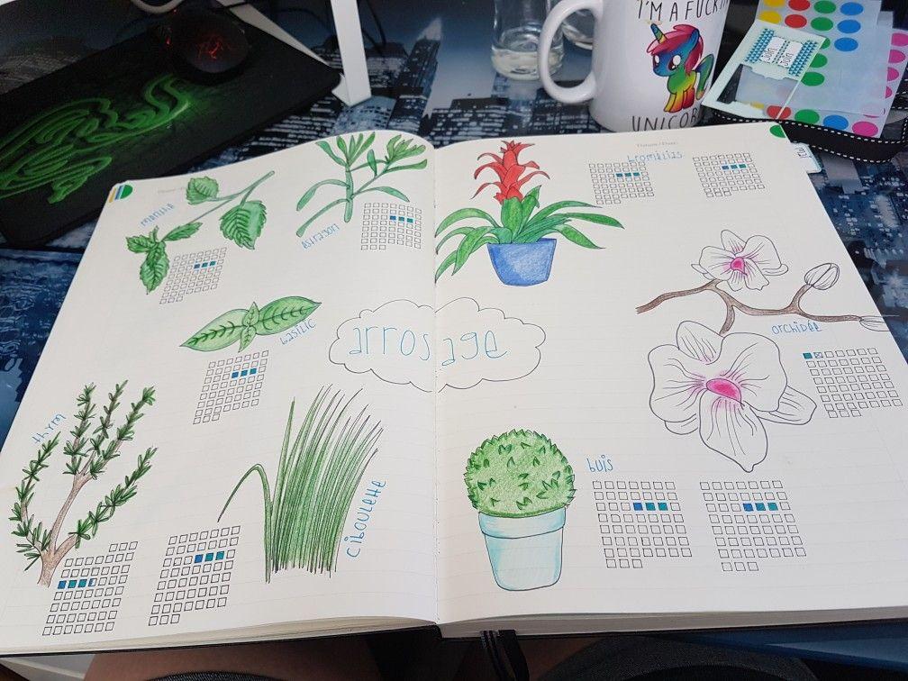 Page Bujo Du Suivi De L Arrosage De Mes Plantes Pour Que J Arrete