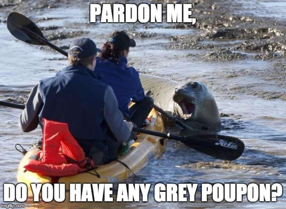 Related Image Kayaking